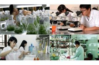 Phát triển nguồn tin khoa học và công nghệ phục vụ nghiên cứu